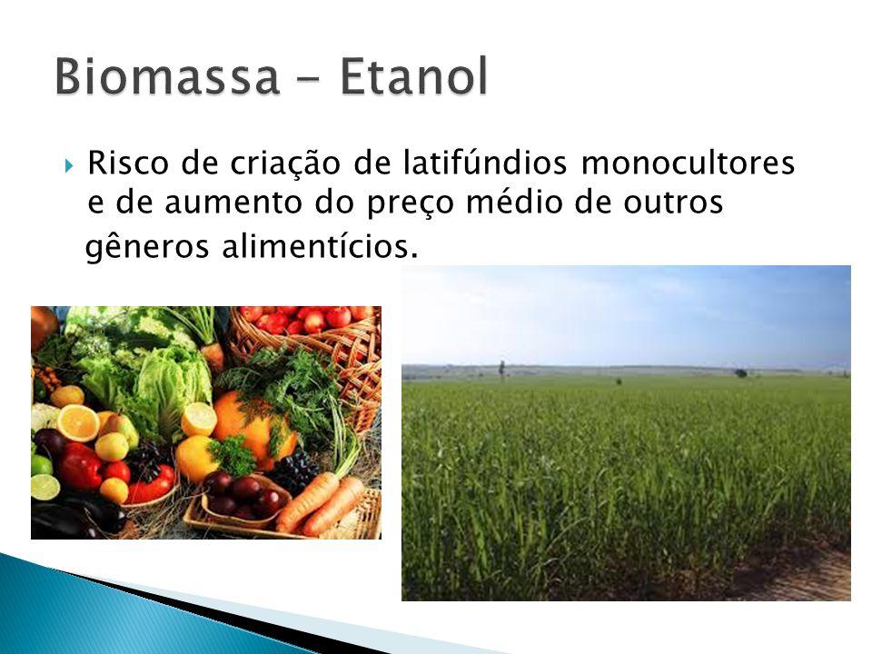  Risco de criação de latifúndios monocultores e de aumento do preço médio de outros gêneros alimentícios.