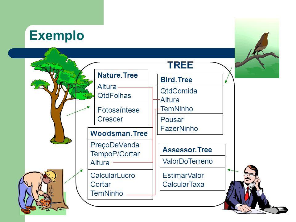 Exemplo Nature.Tree Altura QtdFolhas Fotossíntese Crescer Woodsman.Tree PreçoDeVenda TempoP/Cortar Altura CalcularLucro Cortar TemNinho Assessor.Tree ValorDoTerreno EstimarValor CalcularTaxa Bird.Tree QtdComida Altura TemNinho Pousar FazerNinho TREE