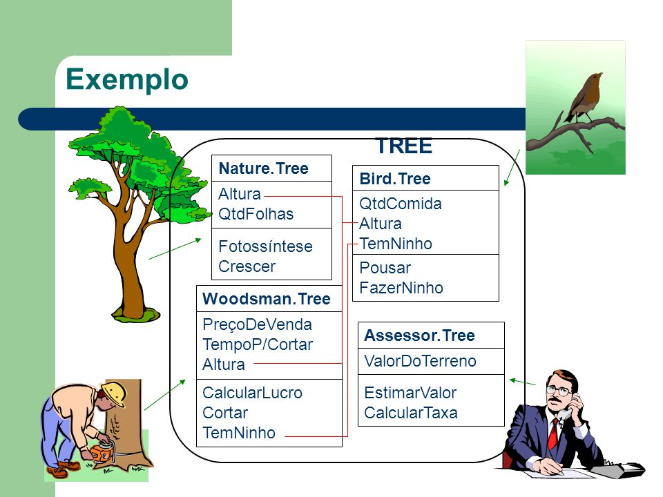 Exemplo Nature.Tree Altura QtdFolhas Fotossíntese Crescer Woodsman.Tree PreçoDeVenda TempoP/Cortar Altura CalcularLucro Cortar TemNinho Assessor.Tree