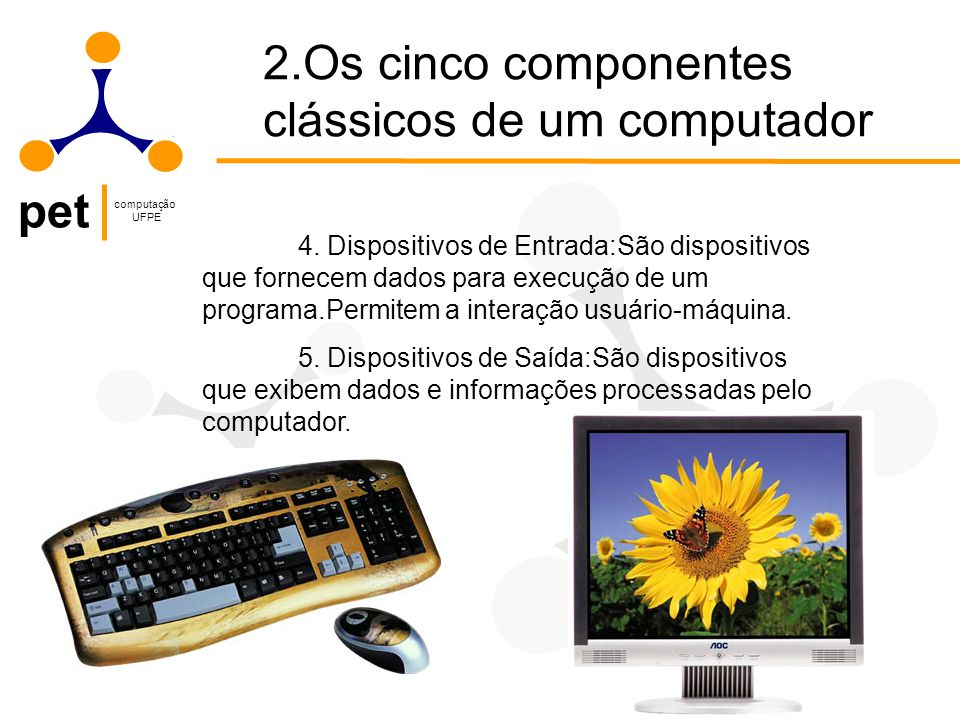pet computação UFPE 4.