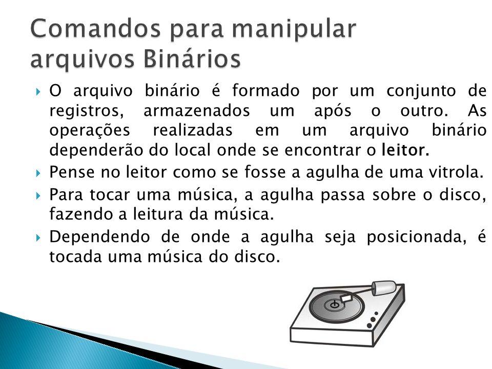  O arquivo binário é formado por um conjunto de registros, armazenados um após o outro.