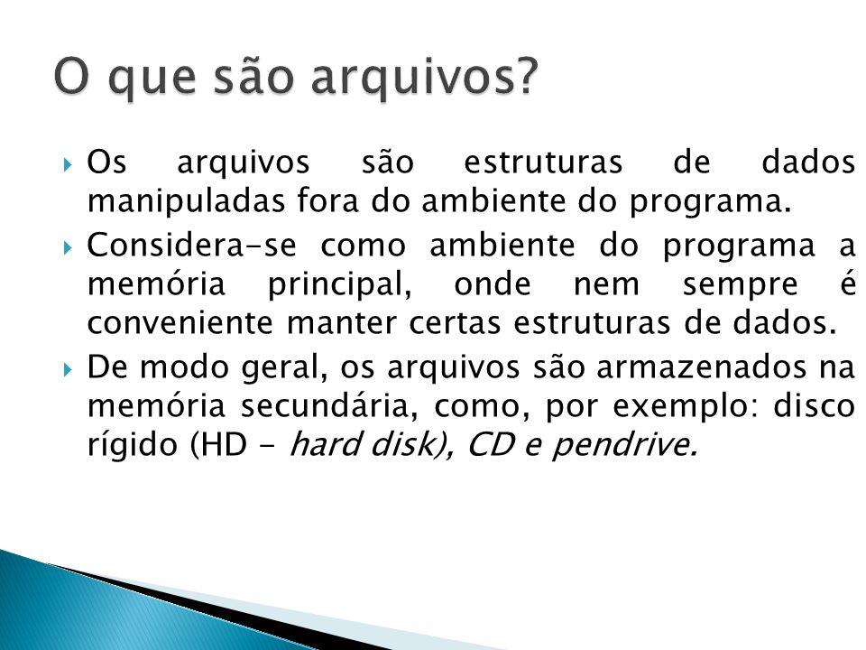  Os arquivos são estruturas de dados manipuladas fora do ambiente do programa.