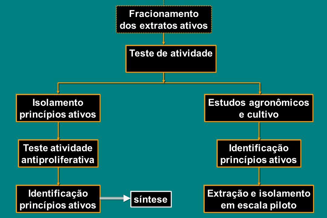 Fracionamento Teste de atividade Isolamento princípios ativos Teste atividade antiproliferativa Identificação princípios ativos Estudos agronômicos e