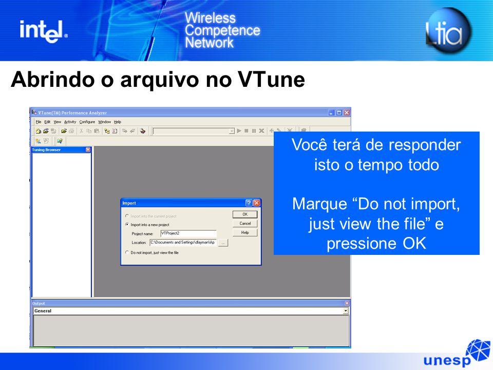 """Abrindo o arquivo no VTune Você terá de responder isto o tempo todo Marque """"Do not import, just view the file"""" e pressione OK"""