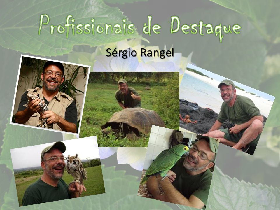 Sérgio Rangel