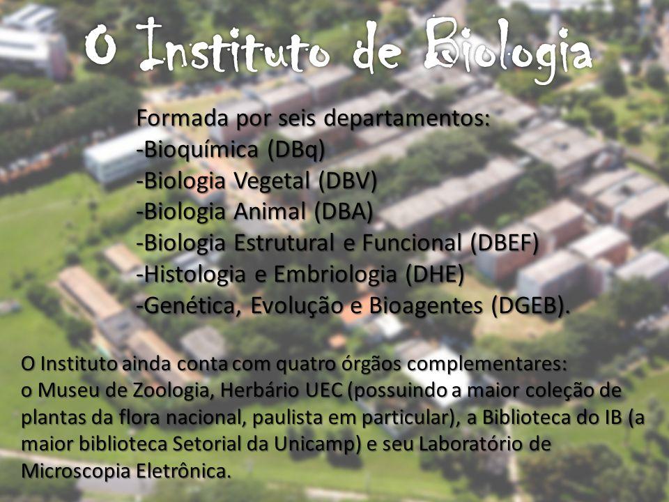 O Instituto ainda conta com quatro órgãos complementares: o Museu de Zoologia, Herbário UEC (possuindo a maior coleção de plantas da flora nacional, paulista em particular), a Biblioteca do IB (a maior biblioteca Setorial da Unicamp) e seu Laboratório de Microscopia Eletrônica.