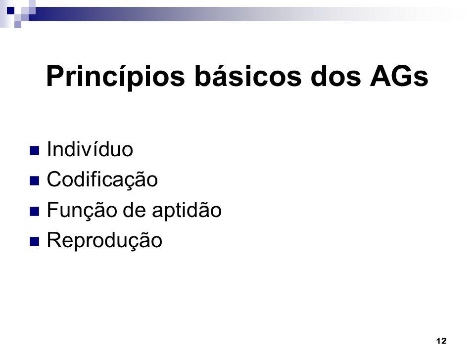 12 Princípios básicos dos AGs Indivíduo Codificação Função de aptidão Reprodução