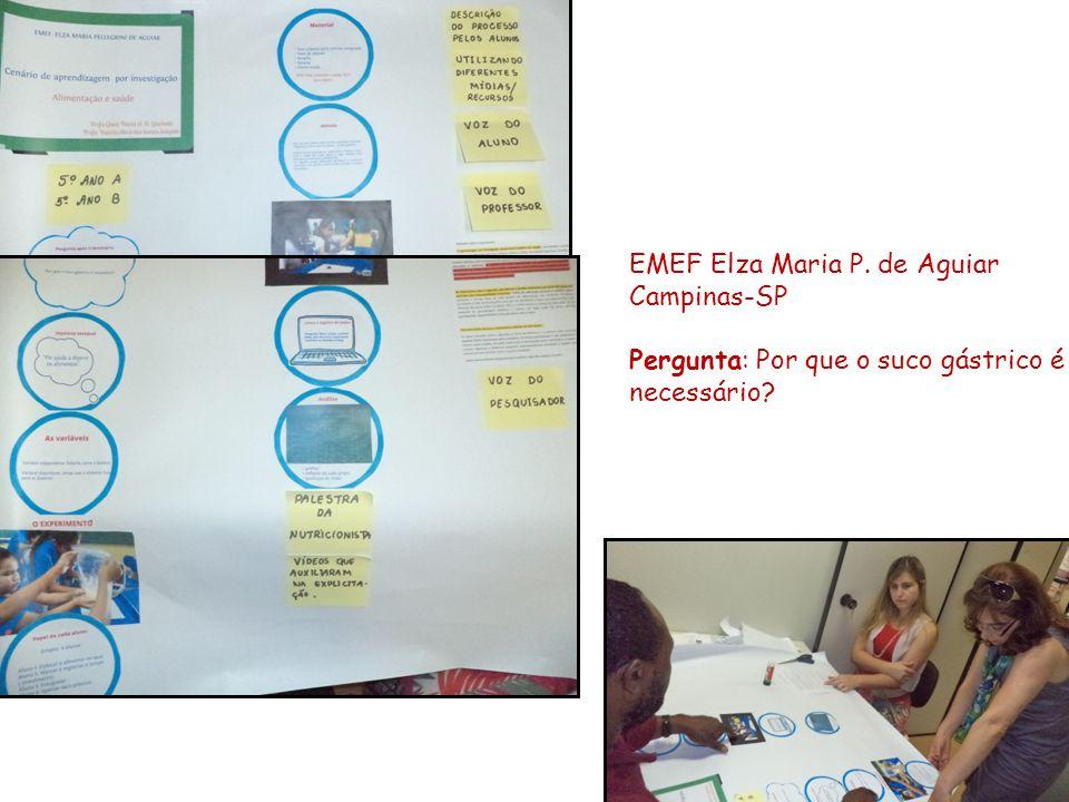 EMEF Elza Maria P. de Aguiar Campinas-SP Pergunta: Por que o suco gástrico é necessário?
