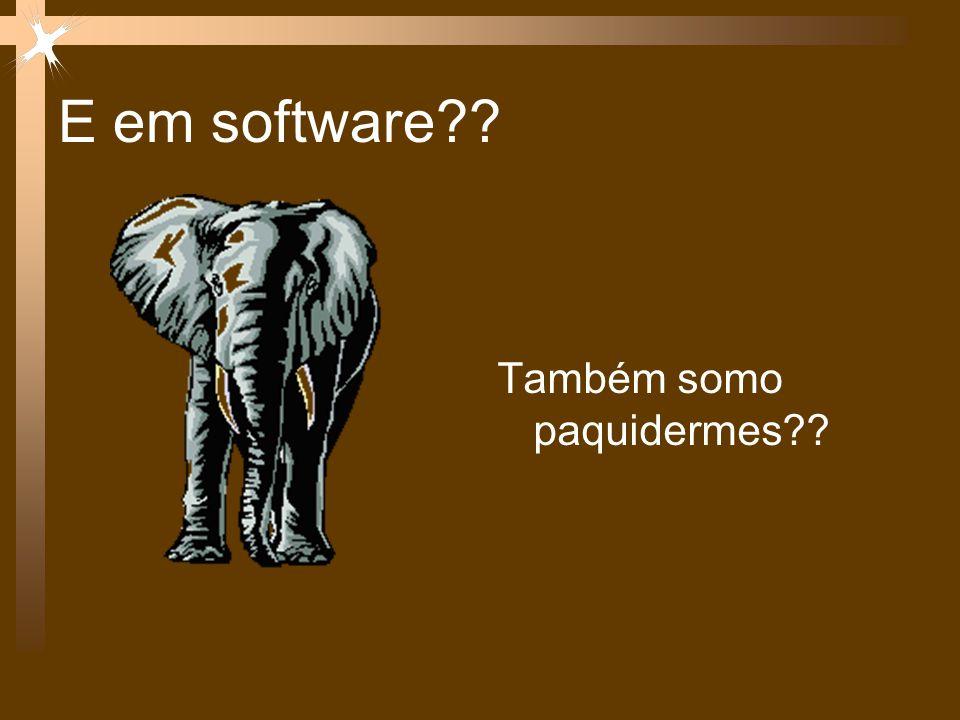 E em software?? Também somo paquidermes??