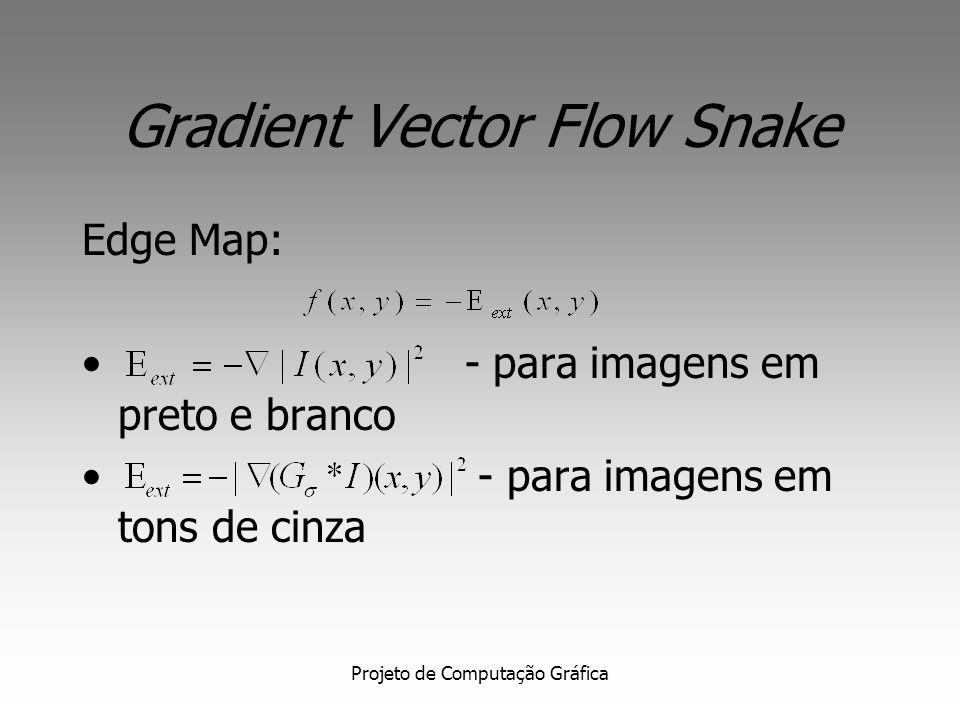 Projeto de Computação Gráfica Gradient Vector Flow Snake