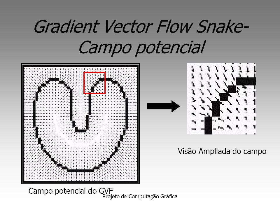 Projeto de Computação Gráfica Gradient Vector Flow Snakes Define um novo campo potencial denominado Gradient Vector Flow (GVF) O GVF possui campos que