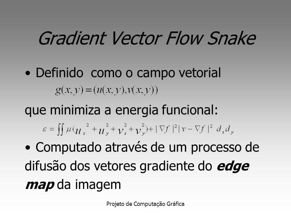 Projeto de Computação Gráfica Gradient Vector Flow Snake- Campo potencial Campo potencial do GVF Visão Ampliada do campo
