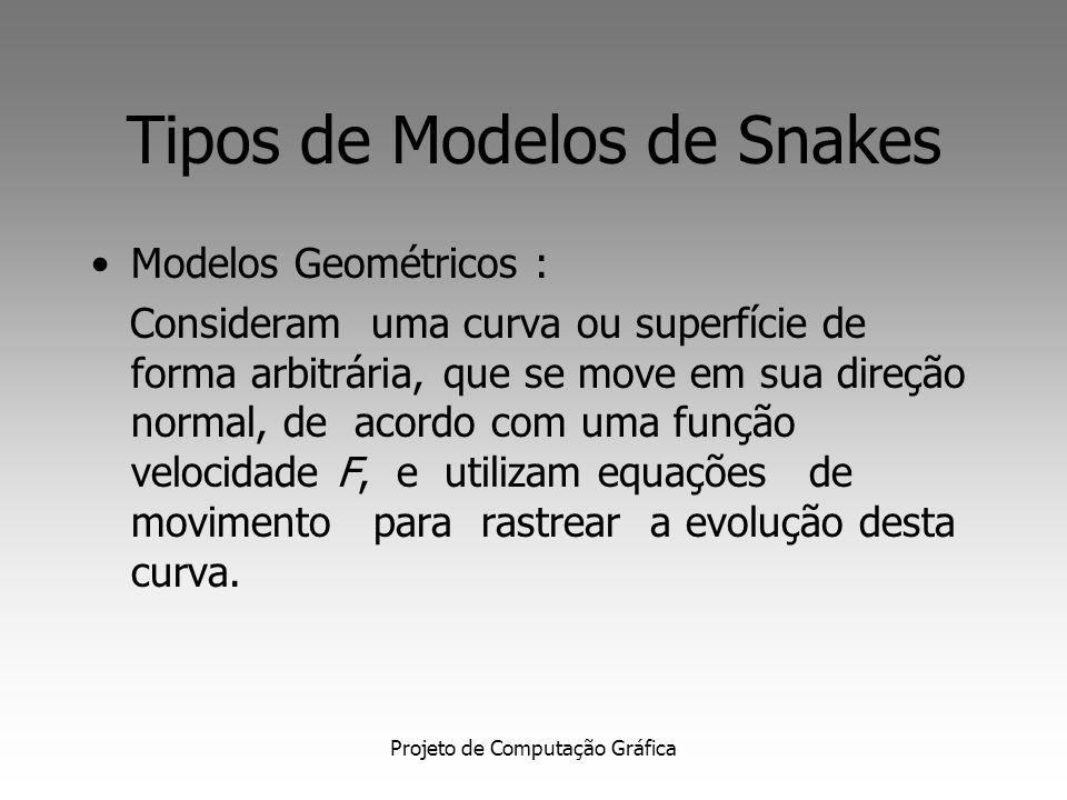 Projeto de Computação Gráfica Tipos de Modelos de Snakes Modelos Geométricos : Consideram uma curva ou superfície de forma arbitrária, que se move em sua direção normal, de acordo com uma função velocidade F, e utilizam equações de movimento para rastrear a evolução desta curva.