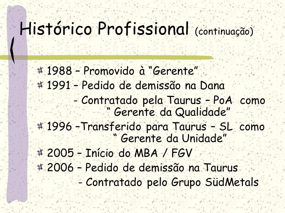 Histórico Profissional (continuação) Viagens ao exterior – estágios, visitas técnicas e participação em feiras 1986 – Japão 1992/93/94/95/97/99/01/04 – EUA 1998/00/02 – Alemanha 2000 – Espanha 2004 - México