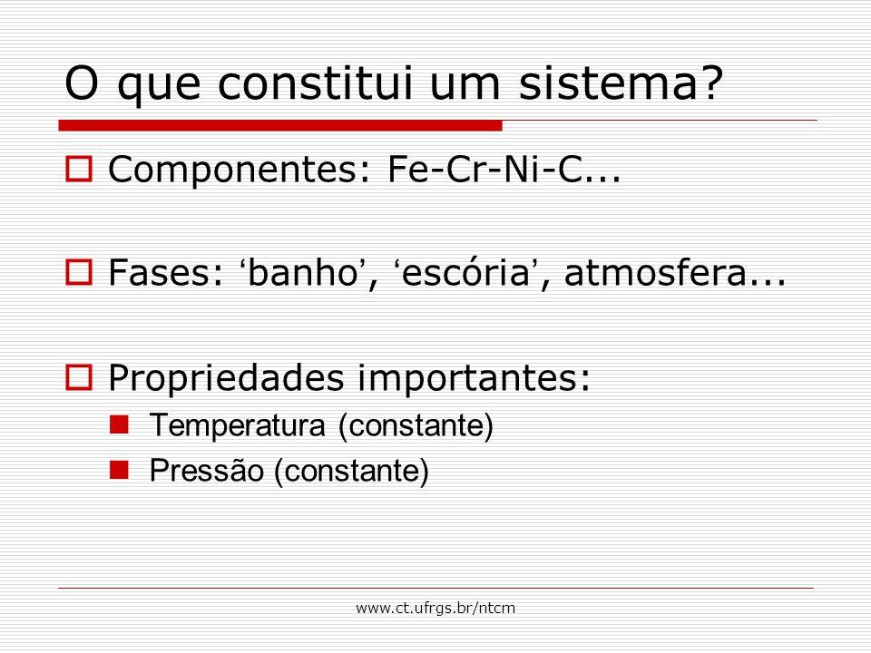 www.ct.ufrgs.br/ntcm O que constitui um sistema?  Componentes: Fe-Cr-Ni-C...  Fases: ' banho ', ' escória ', atmosfera...  Propriedades importantes
