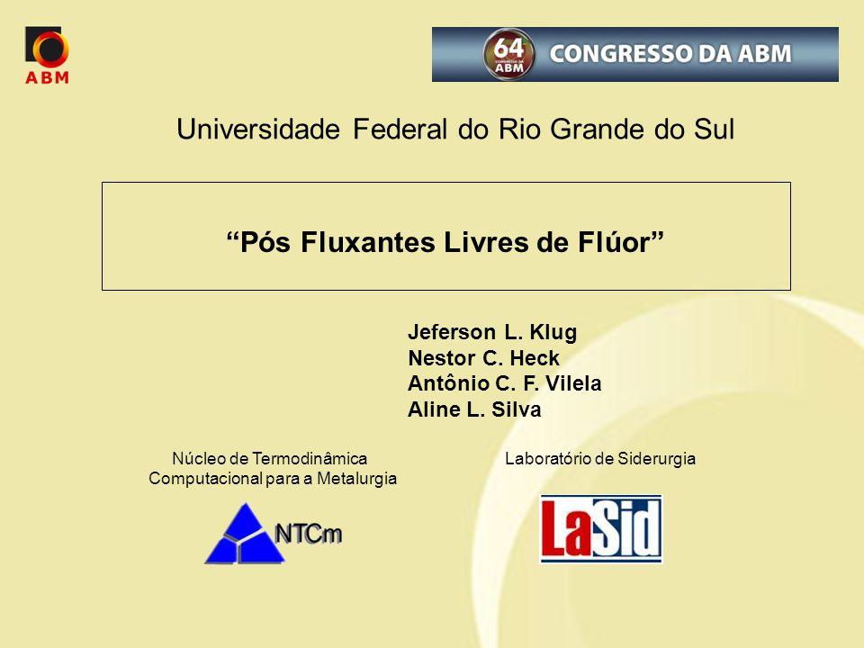 Universidade Federal do Rio Grande do Sul Jeferson L. Klug Nestor C. Heck Antônio C. F. Vilela Aline L. Silva Núcleo de Termodinâmica Laboratório de S