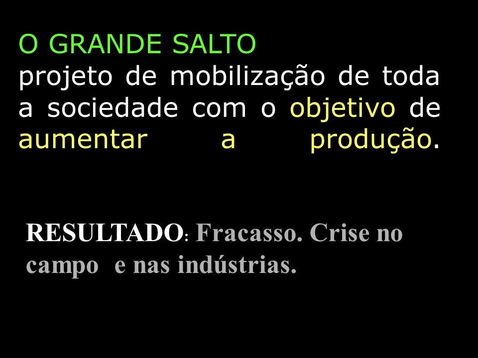O GRANDE SALTO projeto de mobilização de toda a sociedade com o objetivo de aumentar a produção. RESULTADO : Fracasso. Crise no campo e nas indústrias