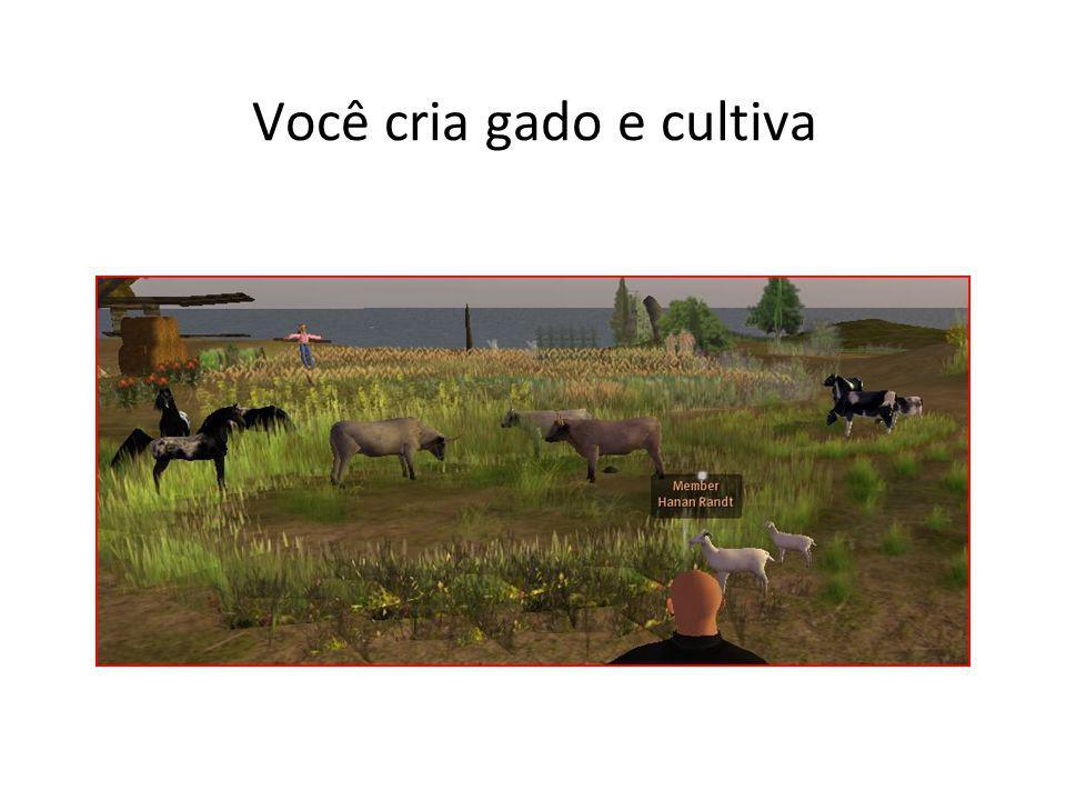 Você cria gado e cultiva