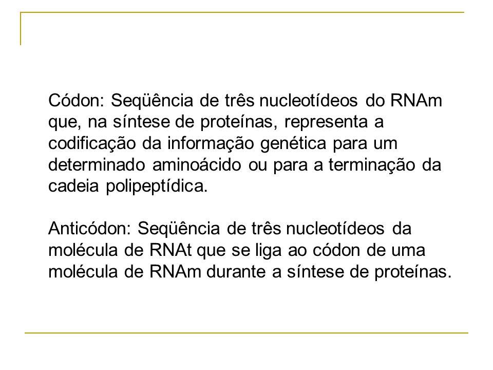 Códon: Seqüência de três nucleotídeos do RNAm que, na síntese de proteínas, representa a codificação da informação genética para um determinado aminoácido ou para a terminação da cadeia polipeptídica.