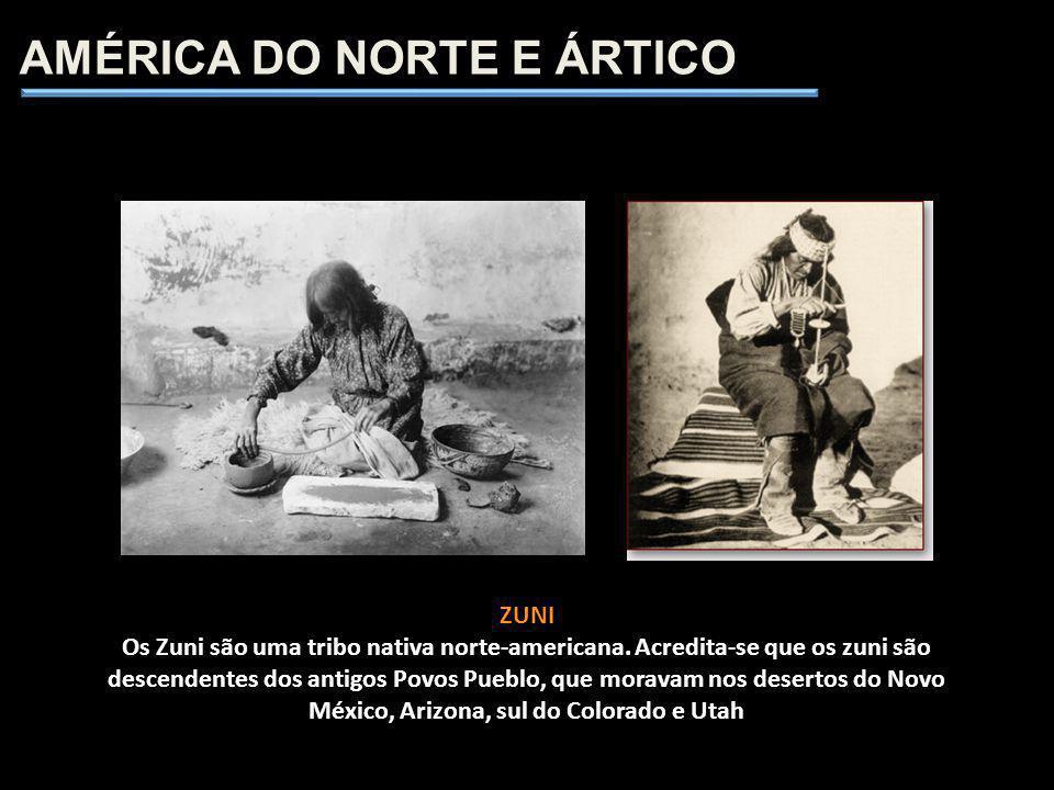AMÉRICA DO NORTE E ÁRTICO ZUNI Os Zuni são uma tribo nativa norte-americana. Acredita-se que os zuni são descendentes dos antigos Povos Pueblo, que mo