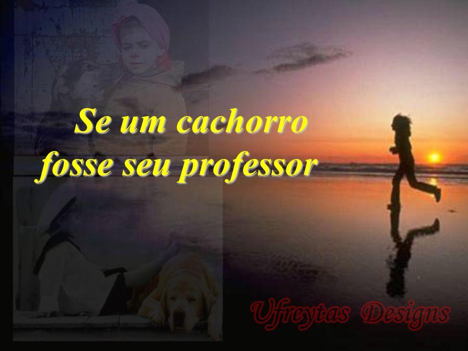 Se um cachorro fosse seu professor Se um cachorro fosse seu professor