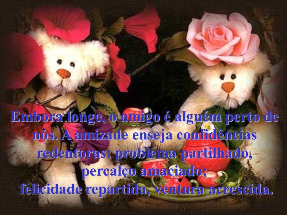 A amizade ameniza as tarefas difíceis, porque a gente não as realiza sózinho.