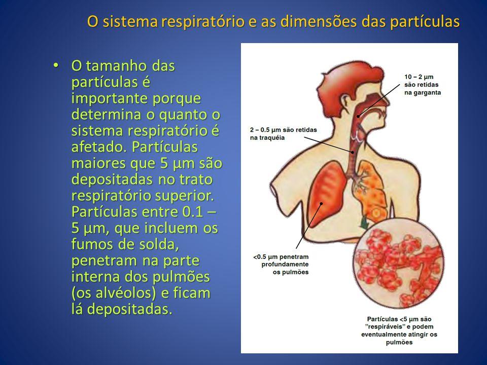 O sistema respiratório e as dimensões das partículas O tamanho das partículas é importante porque determina o quanto o sistema respiratório é afetado.