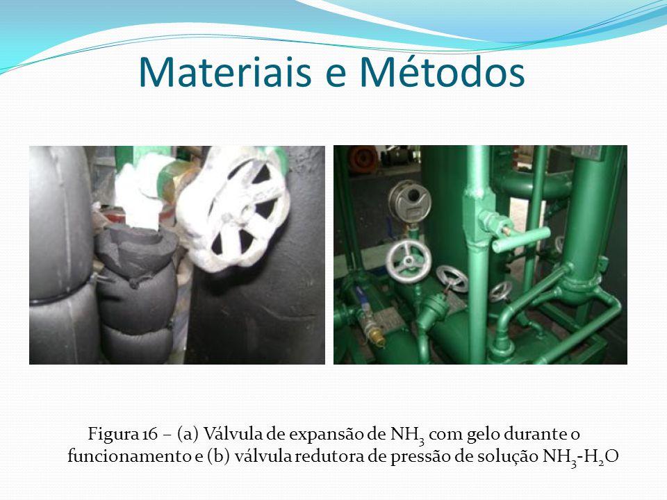Figura 16 – (a) Válvula de expansão de NH 3 com gelo durante o funcionamento e (b) válvula redutora de pressão de solução NH 3 -H 2 O