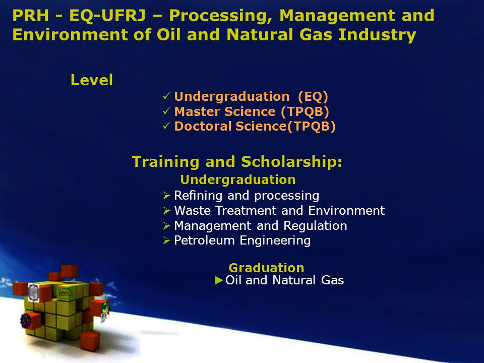 PRH - EQ-UFRJ – Processing, Management and Environment of Oil and Natural Gas Industry Level Undergraduation (EQ) Master Science (TPQB) Doctoral Science(TPQB) Training and Scholarship: Undergraduation  Refining and processing  Waste Treatment and Environment  Management and Regulation  Petroleum Engineering Graduation ► Oil and Natural Gas