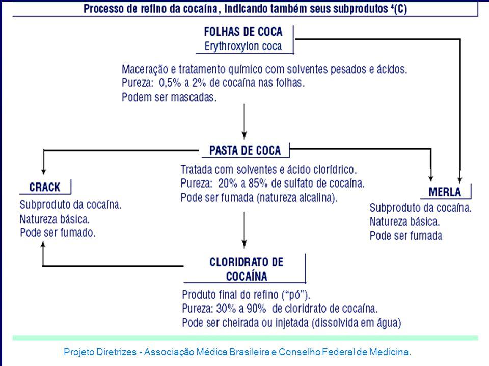 Projeto Diretrizes - Associação Médica Brasileira e Conselho Federal de Medicina.
