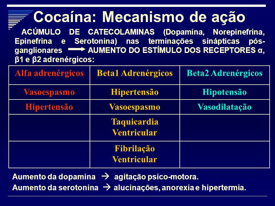 Cocaína: Mecanismo de ação Alfa adrenérgicosBeta1 AdrenérgicosBeta2 Adrenérgicos VasoespasmoHipertensãoHipotensão HipertensãoVasoespasmoVasodilatação