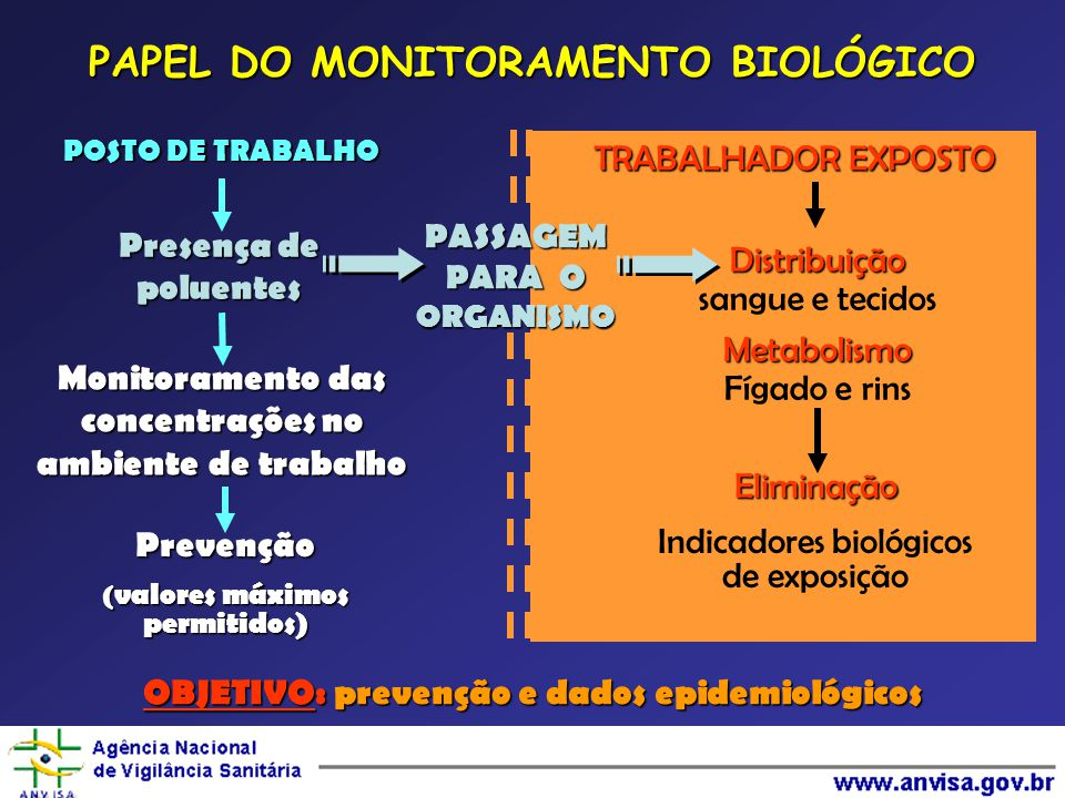 PAPEL DO MONITORAMENTO BIOLÓGICO POSTO DE TRABALHO TRABALHADOR EXPOSTO Presença de poluentes Monitoramento das concentrações no ambiente de trabalho Prevenção ( valores máximos permitidos) PASSAGEM PARA O ORGANISMO Distribuição sangue e tecidosMetabolismo Fígado e rins Eliminação Indicadores biológicos de exposição OBJETIVO: prevenção e dados epidemiológicos