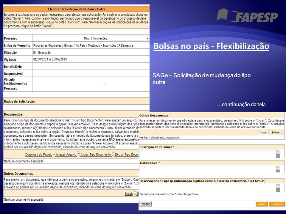 Bolsas no país - Flexibilização...continuação da tela SAGe – Solicitação de mudança do tipo outra
