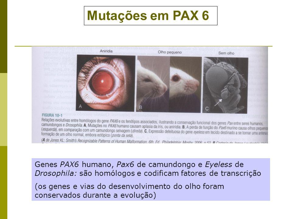 genes pleiotropicos: