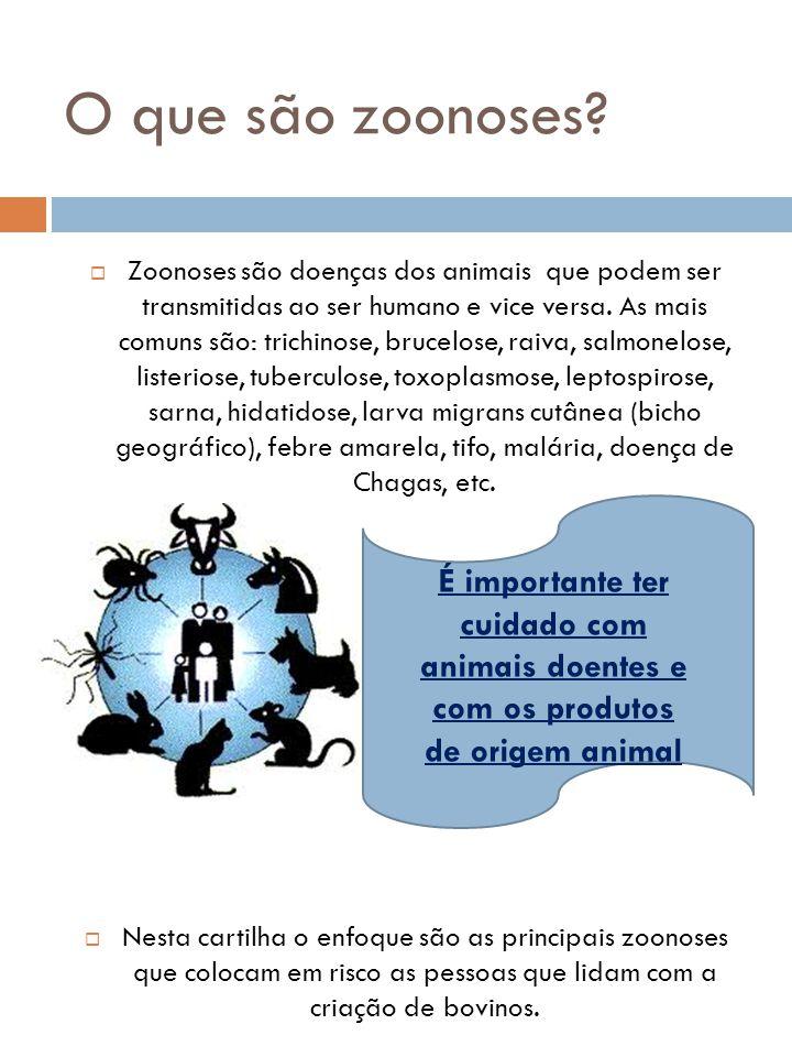 O que são zoonoses?  Zoonoses são doenças dos animais que podem ser transmitidas ao ser humano e vice versa. As mais comuns são: trichinose, brucelos