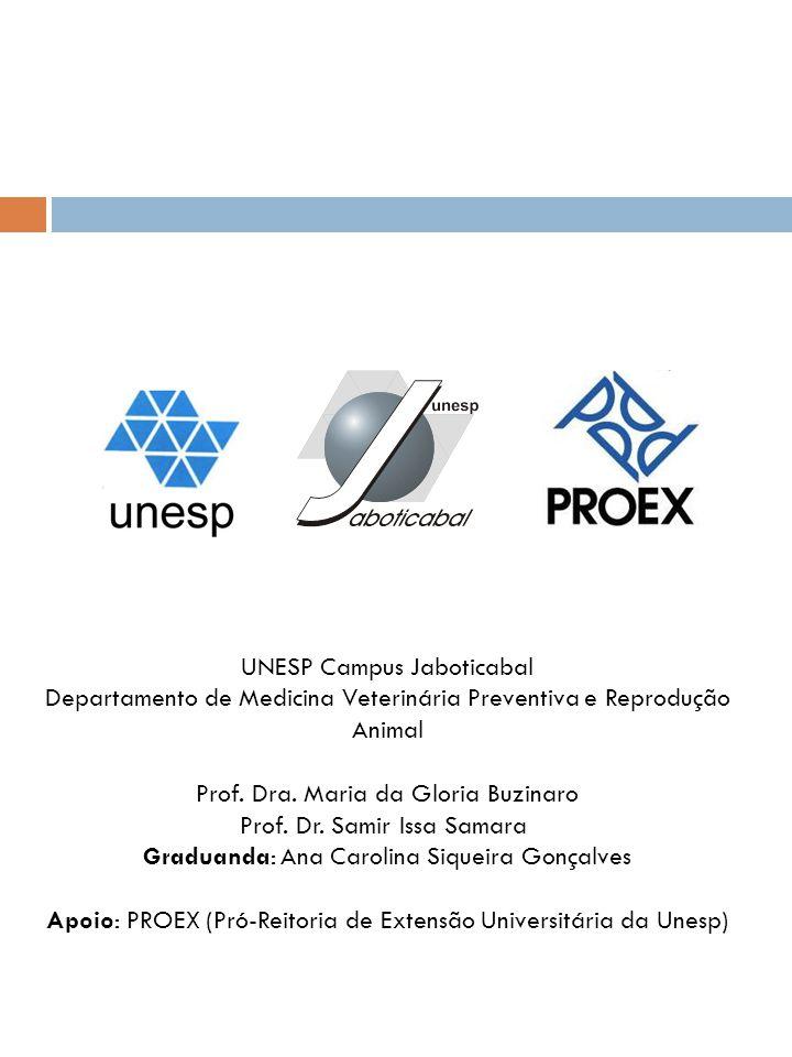 UNESP Campus Jaboticabal Departamento de Medicina Veterinária Preventiva e Reprodução Animal Prof. Dra. Maria da Gloria Buzinaro Prof. Dr. Samir Issa