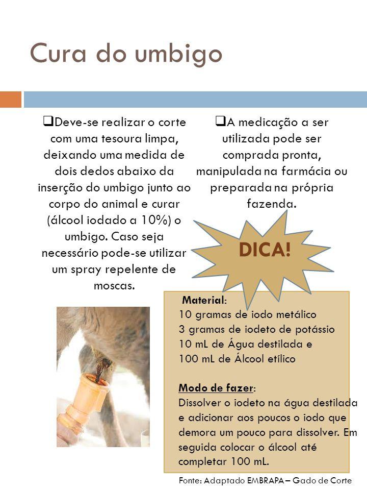 Vacinações e Vermifugações É essencial que se dê especial atenção à saúde dos bezerros, assim o Veterinário deve auxiliar na definição, por exemplo, de um Calendário de Vacinações e vermifugações.