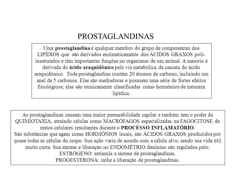 Uma prostaglandina é qualquer membro do grupo de componentes dos LIPÍDIOS que são derivados enzimaticamente dos ÁCIDOS GRAXOS poli- insaturados e têm