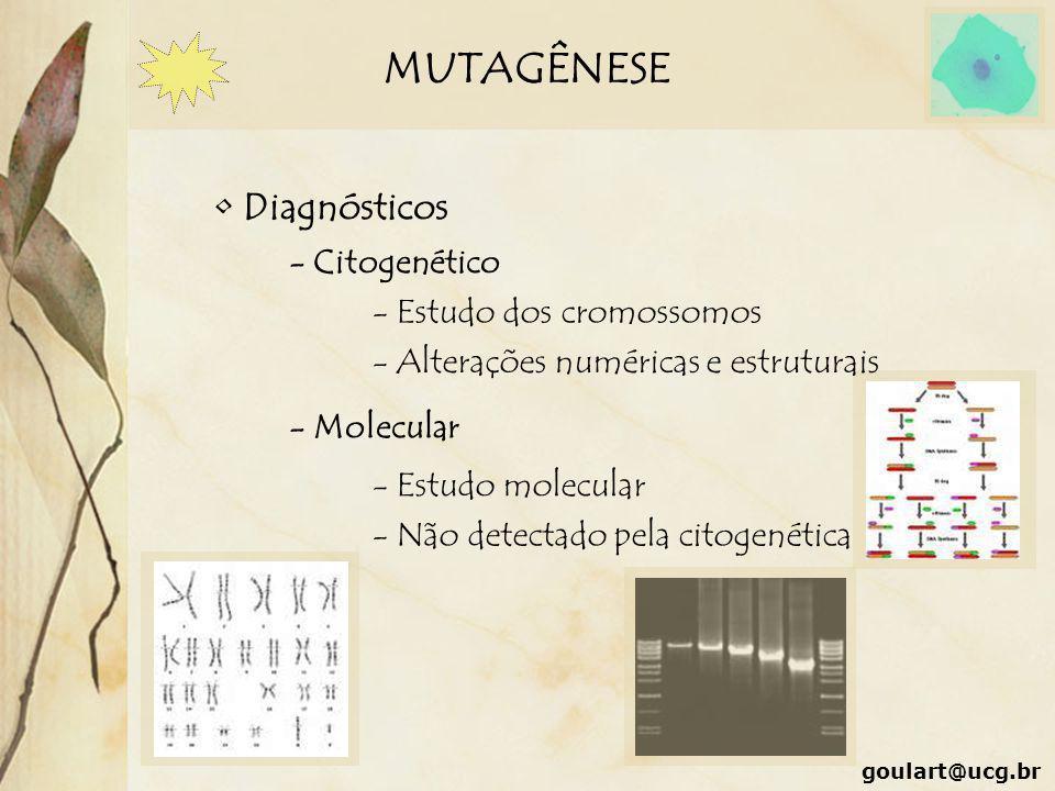 MUTAGÊNESE Diagnósticos - Citogenético - Estudo dos cromossomos - Alterações numéricas e estruturais - Molecular - Estudo molecular - Não detectado pe