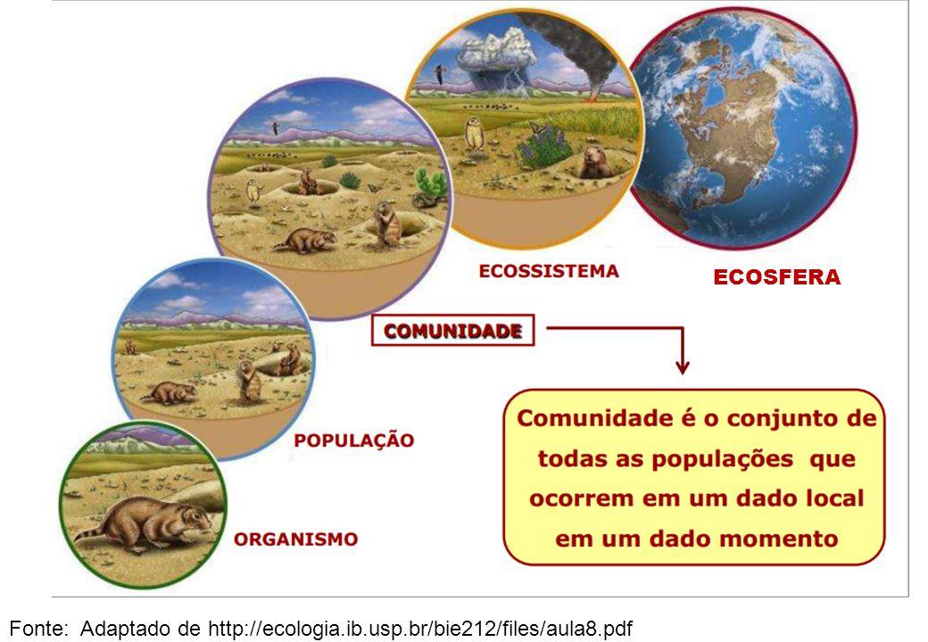 Fonte: Adaptado de http://ecologia.ib.usp.br/bie212/files/aula8.pdf ECOSFERA