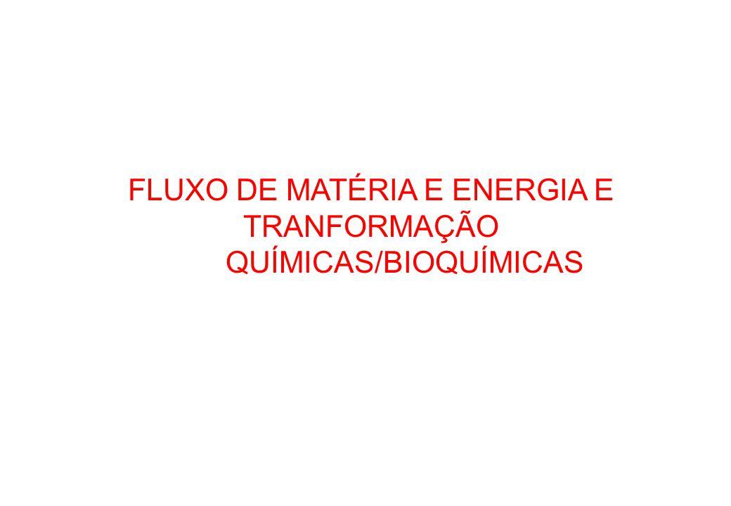 FLUXO DE MATÉRIA E ENERGIA E TRANFORMAÇÃO QUÍMICAS/BIOQUÍMICAS
