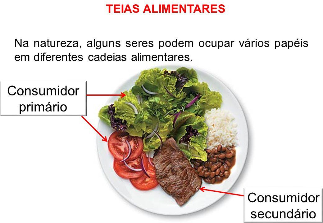 TEIAS ALIMENTARES Na natureza, alguns seres podem ocupar vários papéis em diferentes cadeias alimentares.