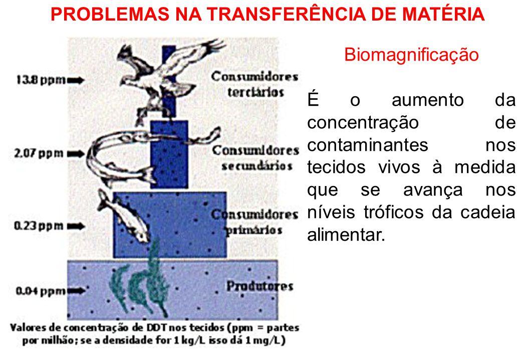 PROBLEMAS NA TRANSFERÊNCIA DE MATÉRIA Biomagnificação É o aumento da concentração de contaminantes nos tecidos vivos à medida que se avança nos níveis tróficos da cadeia alimentar.