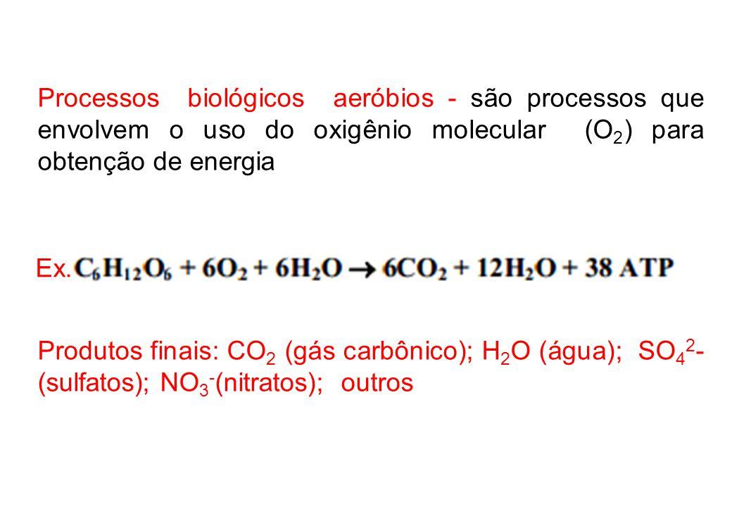 Processos biológicos aeróbios - são processos que envolvem o uso do oxigênio molecular (O 2 ) para obtenção de energia Produtos finais: CO 2 (gás carbônico); H 2 O (água); SO 4 2 - (sulfatos); NO 3 - (nitratos); outros Ex.