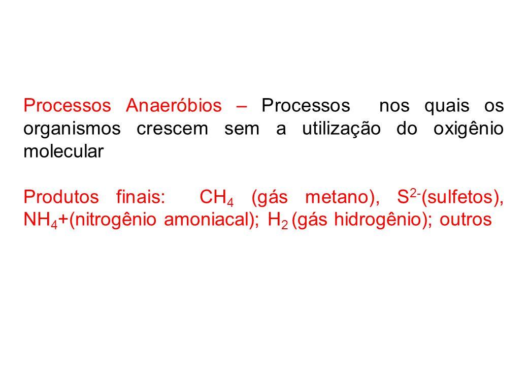 Processos Anaeróbios – Processos nos quais os organismos crescem sem a utilização do oxigênio molecular Produtos finais: CH 4 (gás metano), S 2- (sulfetos), NH 4 +(nitrogênio amoniacal); H 2 (gás hidrogênio); outros