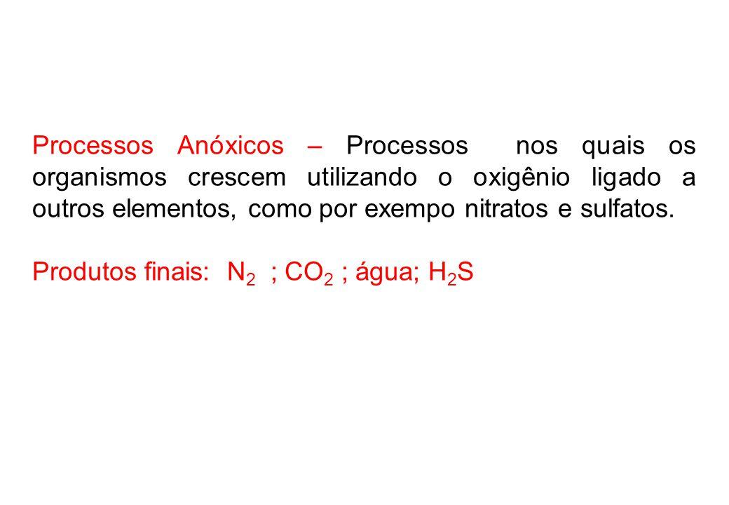 Processos Anóxicos – Processos nos quais os organismos crescem utilizando o oxigênio ligado a outros elementos, como por exempo nitratos e sulfatos.