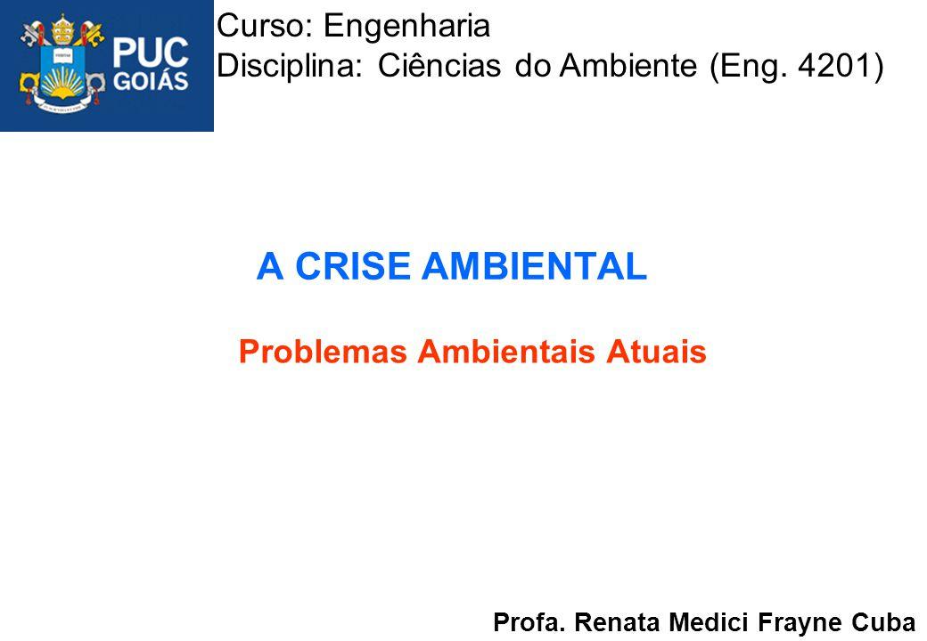 A CRISE AMBIENTAL Problemas Ambientais Atuais Profa. Renata Medici Frayne Cuba Curso: Engenharia Disciplina: Ciências do Ambiente (Eng. 4201)