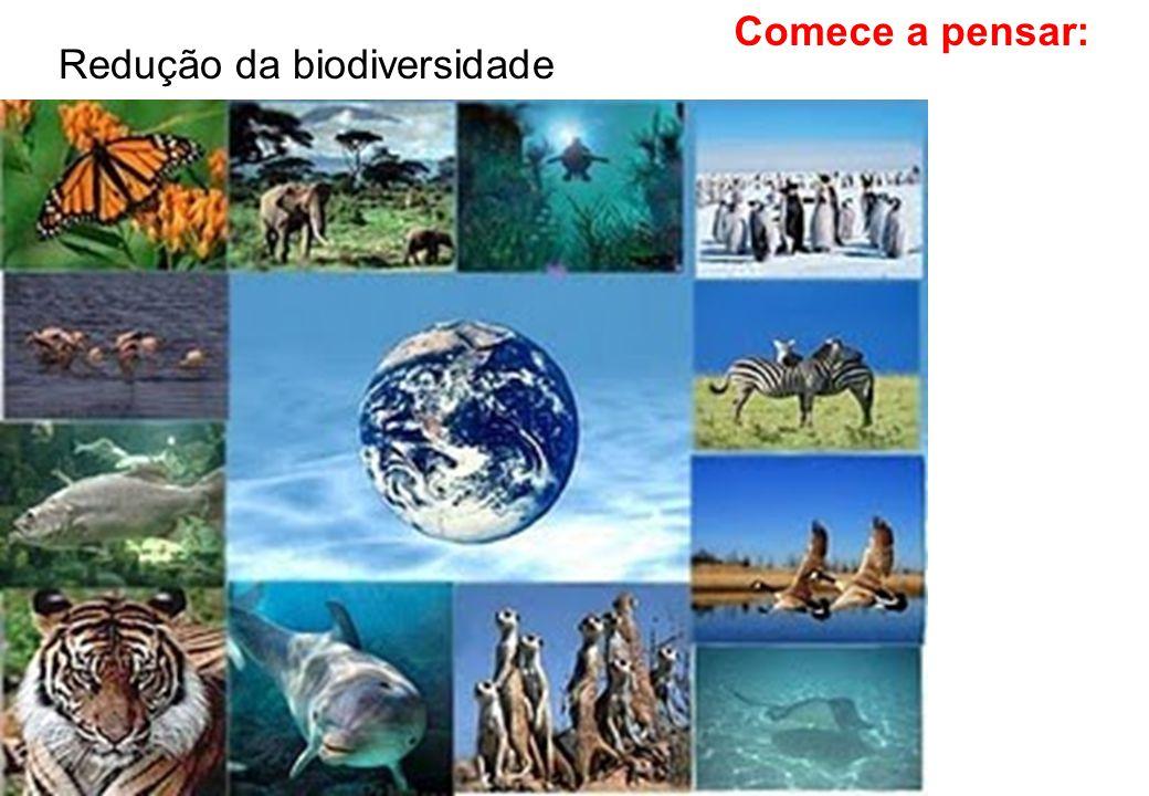 Comece a pensar: Redução da biodiversidade