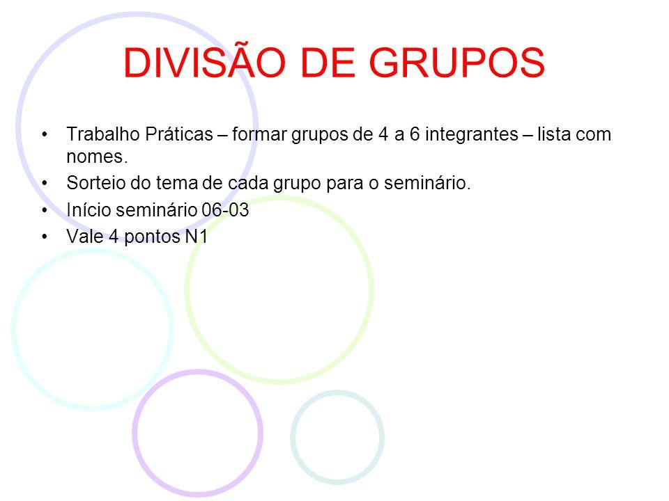 DIVISÃO DE GRUPOS Trabalho Práticas – formar grupos de 4 a 6 integrantes – lista com nomes.
