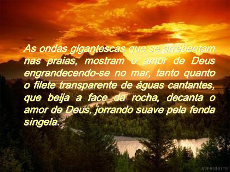 Os passarinhos que pipilam nos prados e cantam nos ramos são a presença do amor de Deus transparecendo nos ninhos...